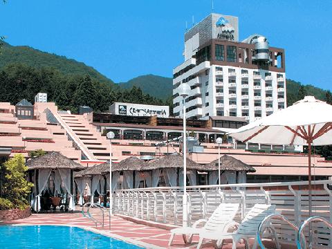 ホテルくさかべアルメリア(岐阜県 下呂温泉)